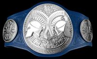 WWE SmackDown Tag Team Championships