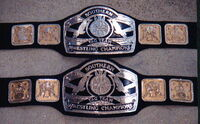 AWA Southern Tag Team Championship