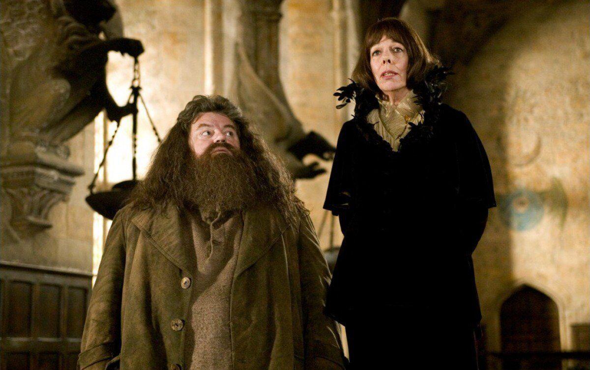 Harry Potter-Hagrid-Maxime