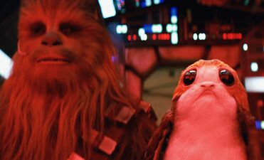 The Internet is Already Hating on Cute New Star Wars Creatures the Porgs
