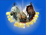Starhill Ponies