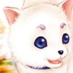 Yueecui/Test
