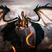 SeregaYork's avatar