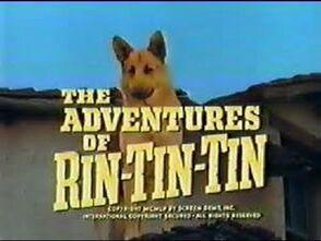 Adventures of rin tin tin
