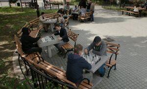 S05E07-Shinwell Holmes chess