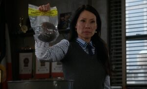 S05E19-Watson murder weapon