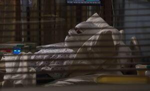 S03E12-Gruner in hospital