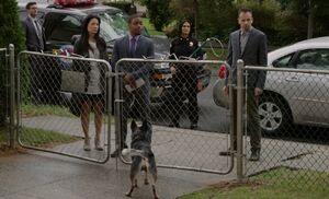 S02E06-Roney's dog barks finale