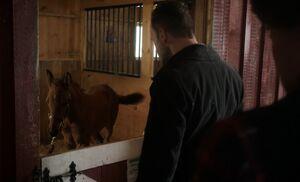 S02E07-Holmes and Nutmeg