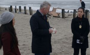 S05E11-At Beach