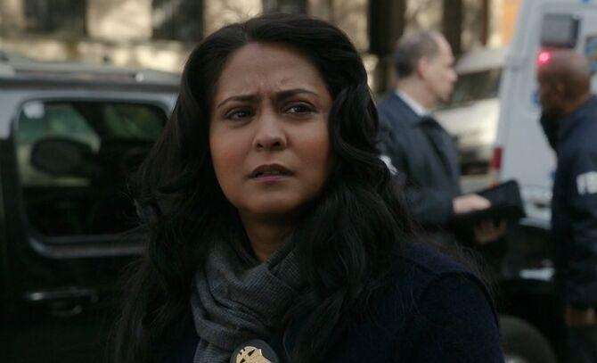 S06E20-Agent Mallick