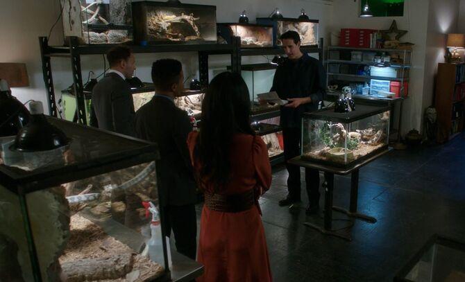 S05E06-Holmes Bell Watson Lima