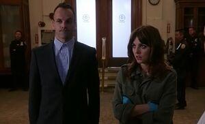 S03E06-Holmes Kitty library
