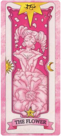 File:SakuraFlower.jpg