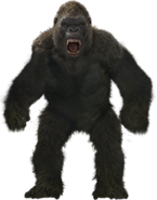 LegendaryKong transparent