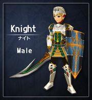 Type knight male