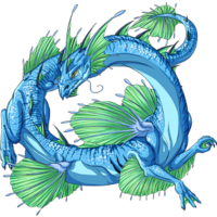 Shallow Water Dragon