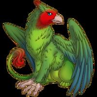 Lovebird Gryphon