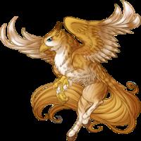 Golden Tabby Hippogryph