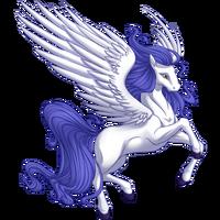 Lilac Glory Pegasus