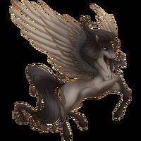 Steel Grey Pegasus