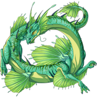 Marsh Dragon new