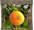 OrangenFleecy