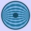 300px-Myocyte
