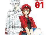 Cells at Work! (Manga)