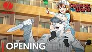 Cells at Work! Opening