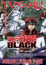 Cells at Work! BLACK's poster