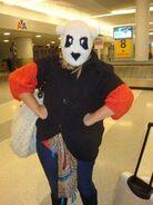 The face of a panda bear