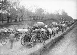 Serbian retreat WWI