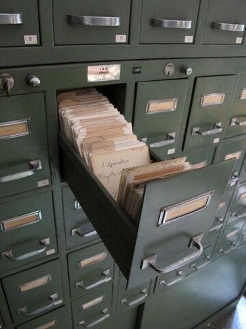 File:Istituto agronomico per l'oltremare, int., biblioteca, schedario 05.JPG