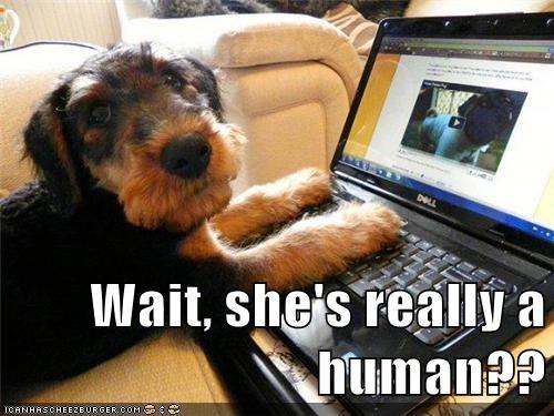 File:Humanhoax.jpg