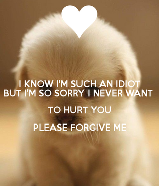 0 1 i-know-i-m-such-an-idiot-but-i-m-so-sorry-i-never-want-to-hurt-you-please-forgive-me-10