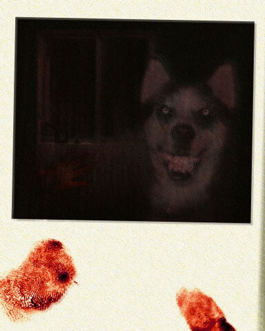 File:Smile.dog.jpg