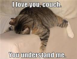 File:CouchCat.jpg