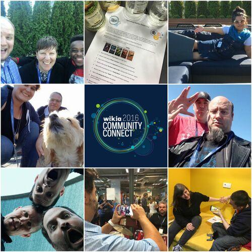 Operation Selfie Shootout Poland SF 2016