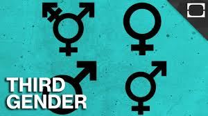 File:3 genders.jpeg