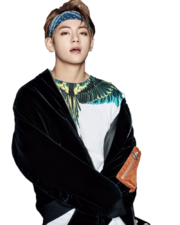 Bts v you never walk alone png by sooyounglover-dayngbz