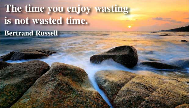 File:The time you enjoy wasting is not wasted time.png