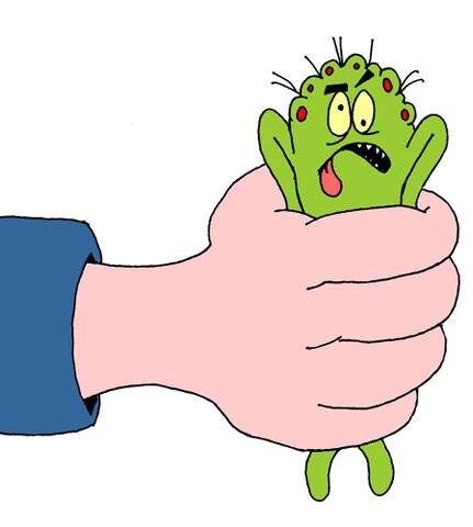 File:Squashed bug cartoon.jpg