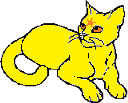 File:Sunstar Star cat.png