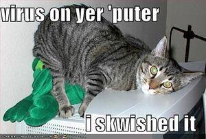 Funny-pictures-virus-cat