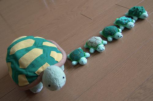 File:Turtles.jpg