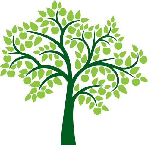 File:Tree Clipart.png