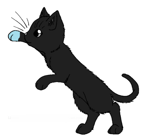 File:Silverkit.png