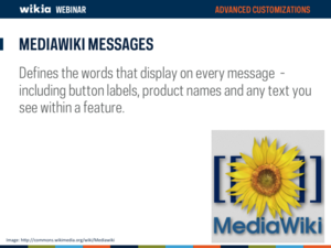 Advanced Customization Webinar Slide07