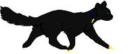 NightShadow deputy II